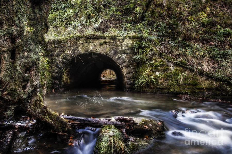 Blackpool Brook Photograph  - Blackpool Brook Fine Art Print
