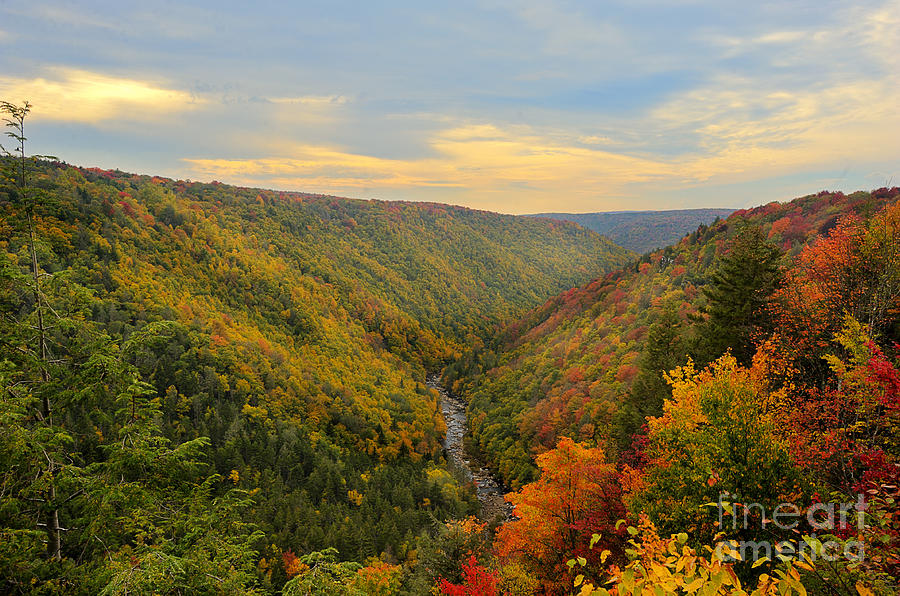 Blackwater Photograph - Blackwater Gorge With Fall Leaves by Dan Friend