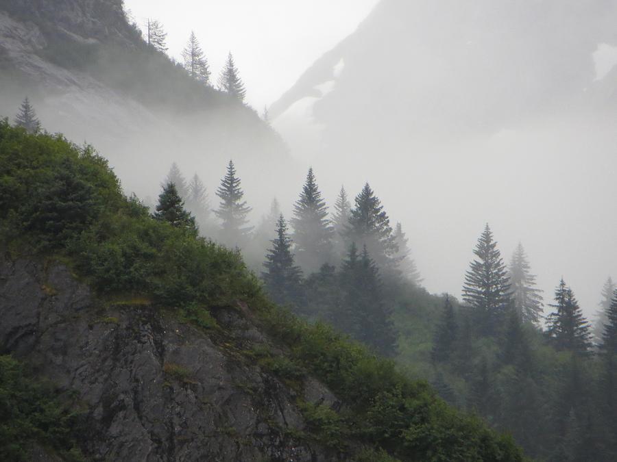 Sawyer Photograph - Blanket Of Fog by Jennifer Wheatley Wolf