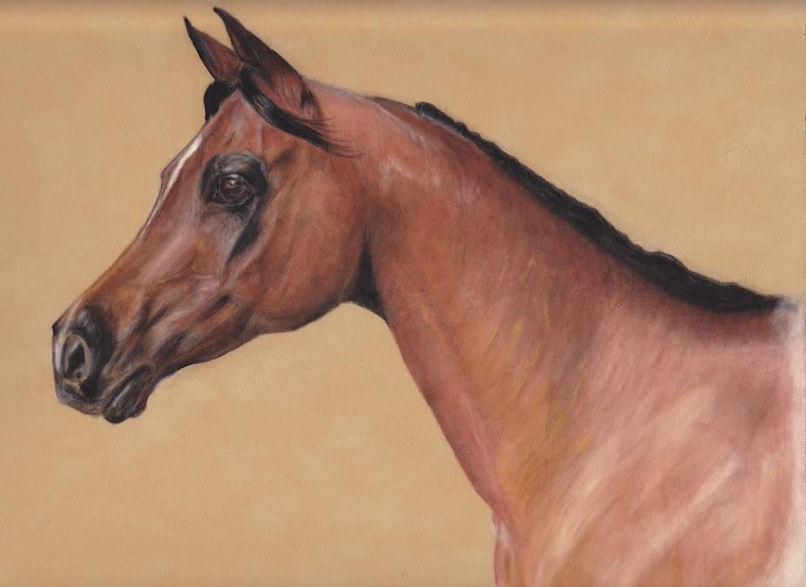 Blood Arabian Queen Pastel  - Blood Arabian Queen Fine Art Print