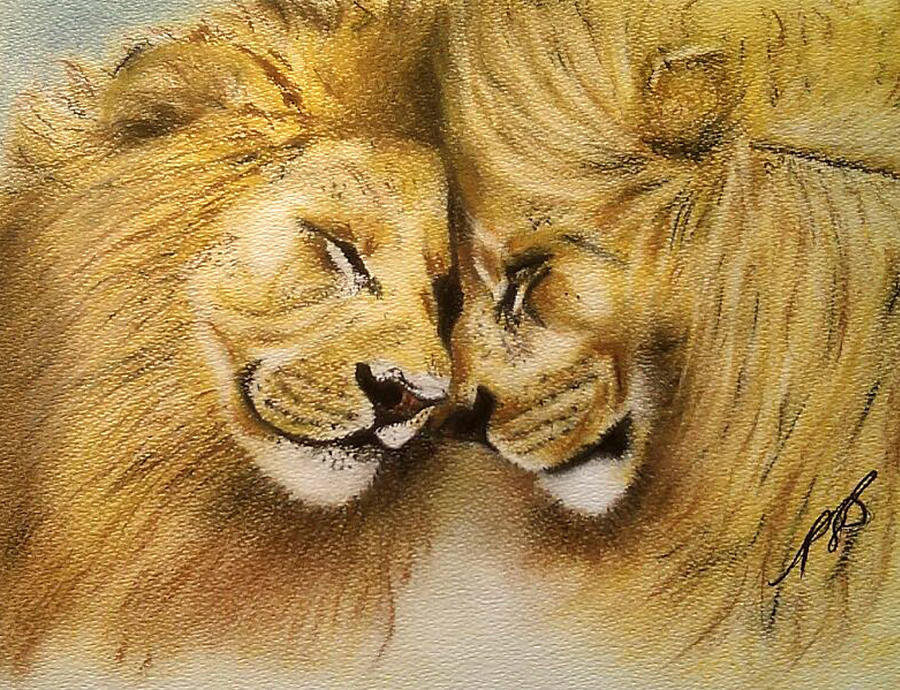 Lion Drawing - Blood Brothers by Paula Steffensen
