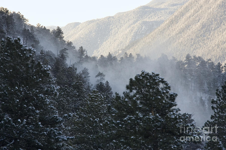 Blowing Snow Photograph