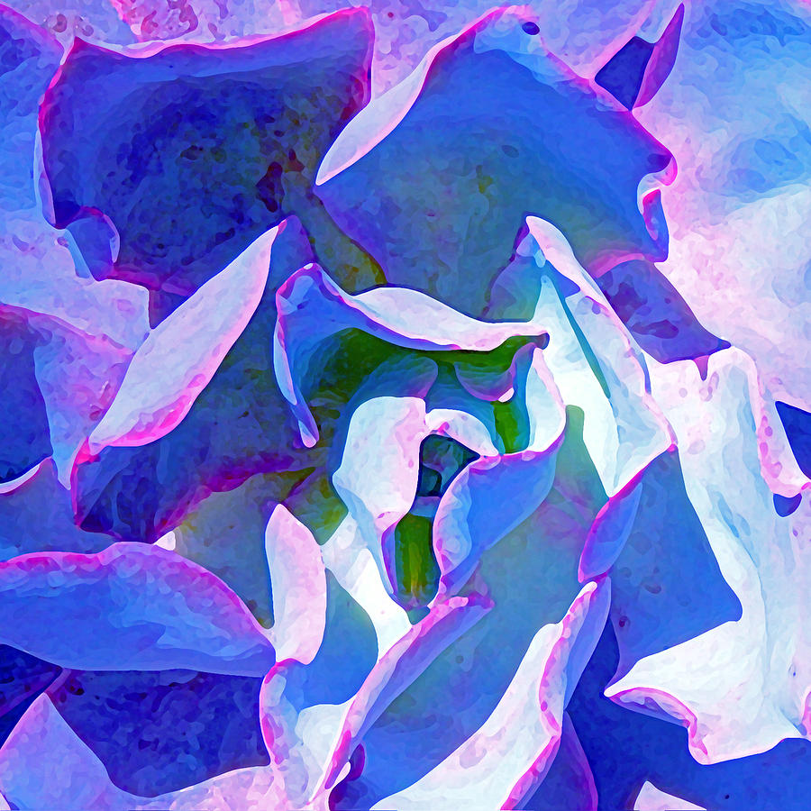 Blue And Purple Succulent Close Up Painting