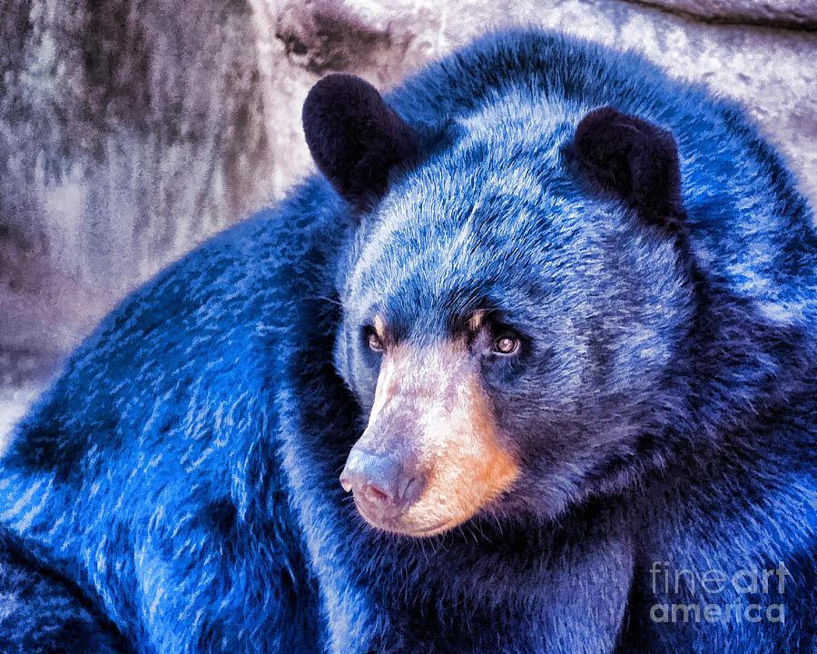 Waynoka Blue-bear-jeanette-mahoney