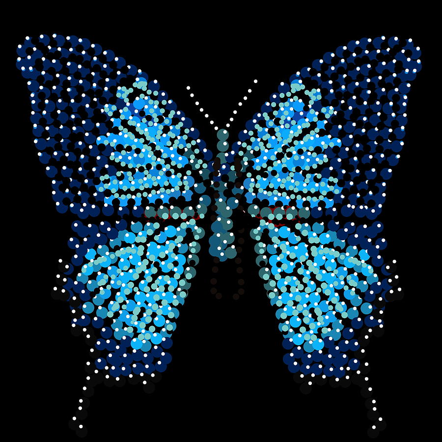 Blue Butterfly Black Background Digital Art