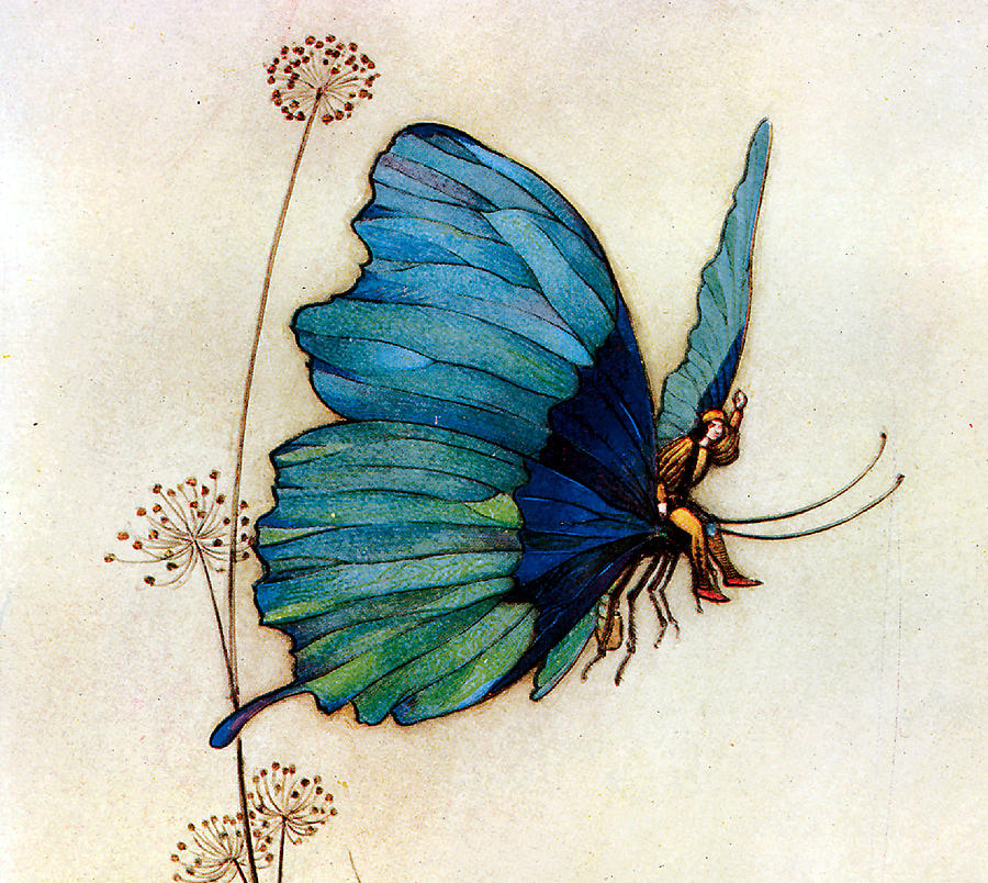 Warwick Goble Digital Art - Blue Butterfly II by Warwick Goble