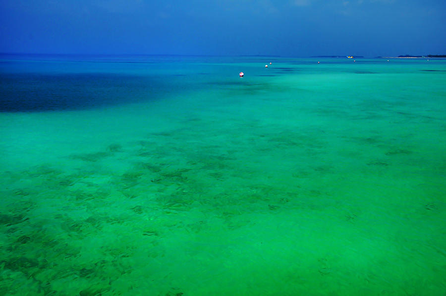 Blue Emerald. Peaceful Lagoon In Indian Ocean  Photograph  - Blue Emerald. Peaceful Lagoon In Indian Ocean  Fine Art Print