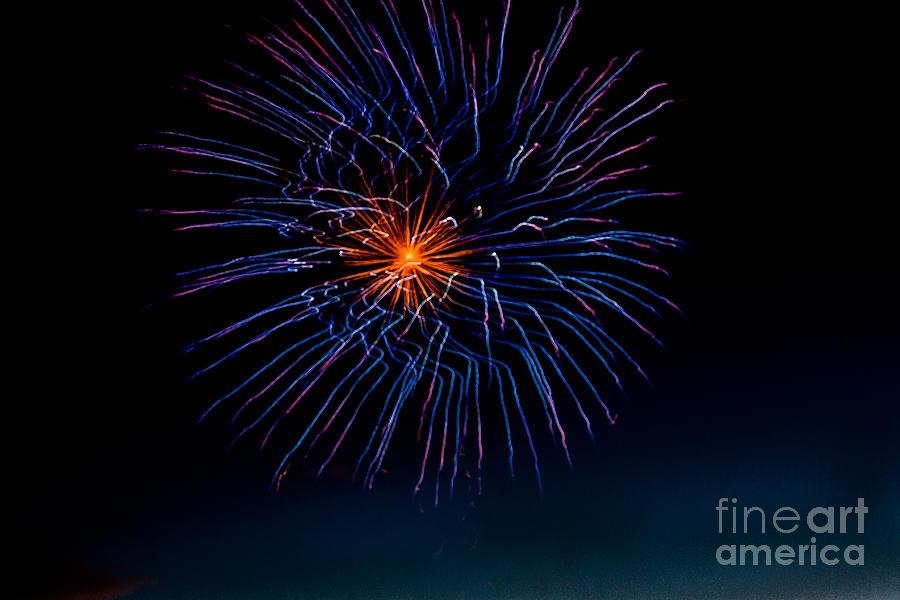 Blue Firework Flower Photograph