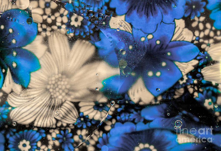 Blue Flower Abstract Photograph