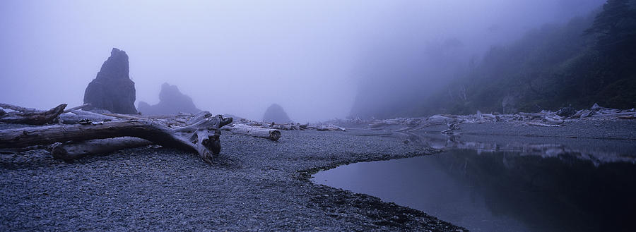 Blue Fog Beach Photograph