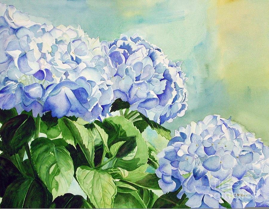 Blue Painting - Blue Hydrangeas by Elizabeth  McRorie