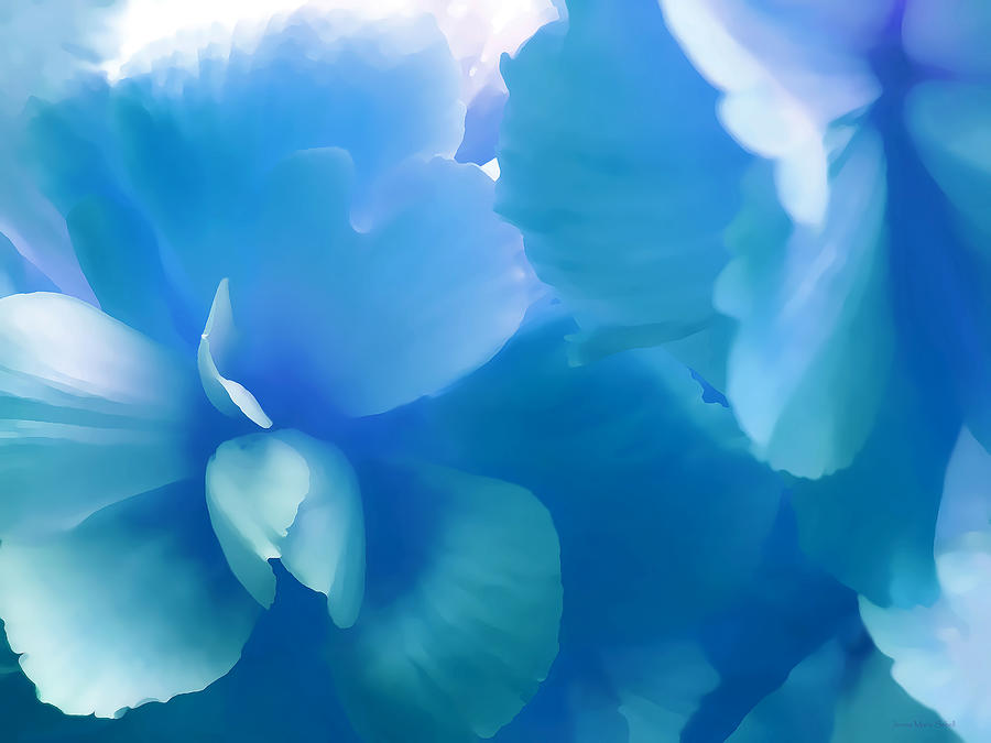 Blue Melody Begonia Floral Photograph  - Blue Melody Begonia Floral Fine Art Print