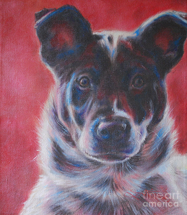 Blue Merle On Red Painting