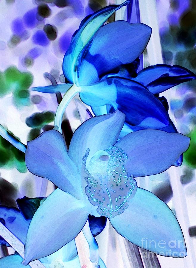 Orchid Photograph - Blue Orchids by Kathleen Struckle