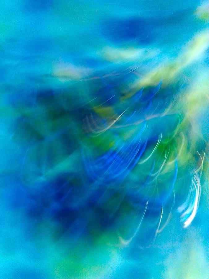 Blue Series E Photograph
