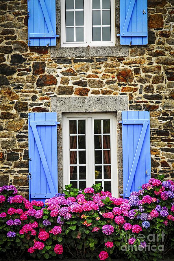 House Photograph - Blue Shutters by Elena Elisseeva