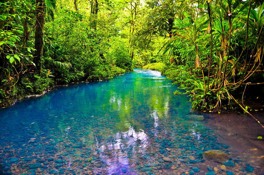 Blue Stream Photograph
