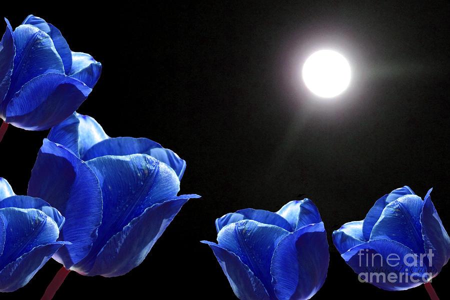 moonlight wallpaper iphone