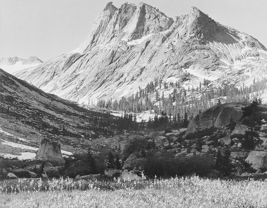an overview of the artwork of ansel easton adams an american photographer and environmentalist 5 things you didn't know about ansel adams' early life ansel easton adams was an american photographer and environmentalist whose black her artist father on.