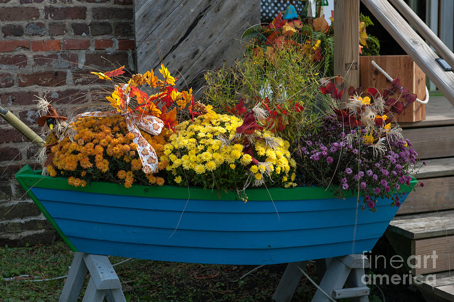 Boat Of Flowers Photograph
