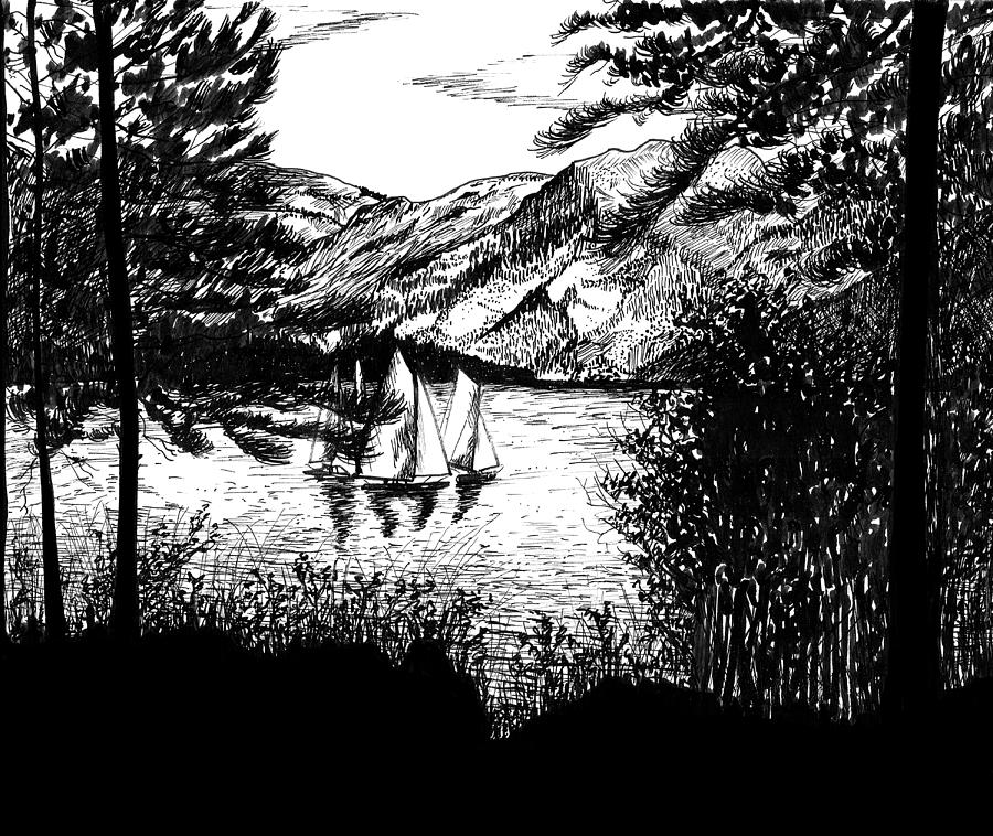 Sailboats Drawing - Boats by Carl Genovese