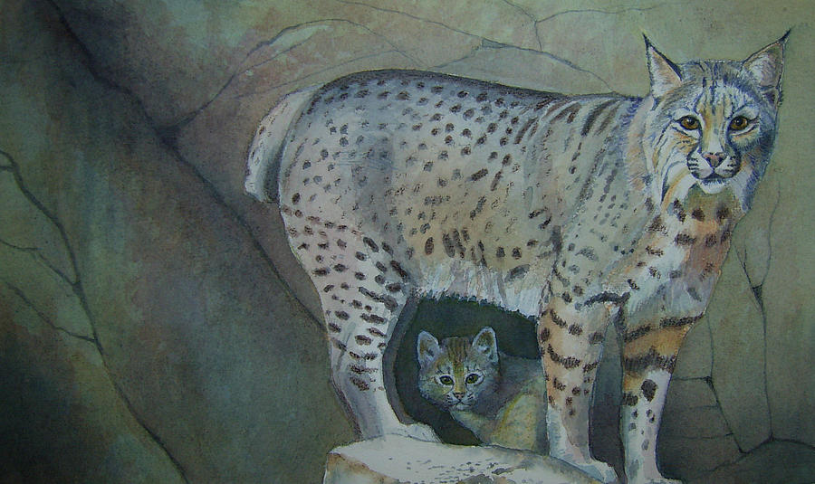 Bobcat And Baby Painting  - Bobcat And Baby Fine Art Print