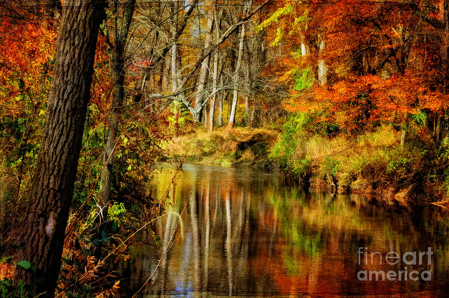 Bobs Creek Photograph  - Bobs Creek Fine Art Print