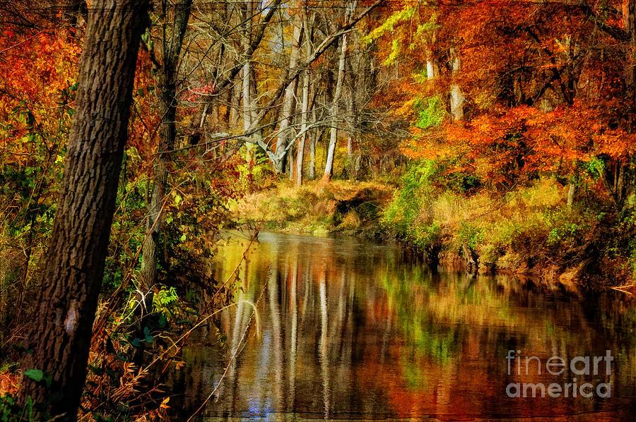 Bobs Creek Photograph
