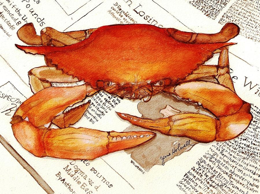 Crab Painting - Boiled Crab by June Holwell