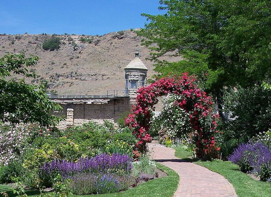 Boise Botanical Gardens Photograph By Georgia Hamlin