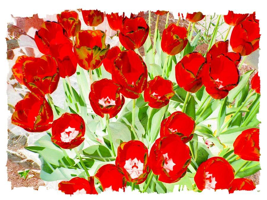Bordered Red Tulips Digital Art