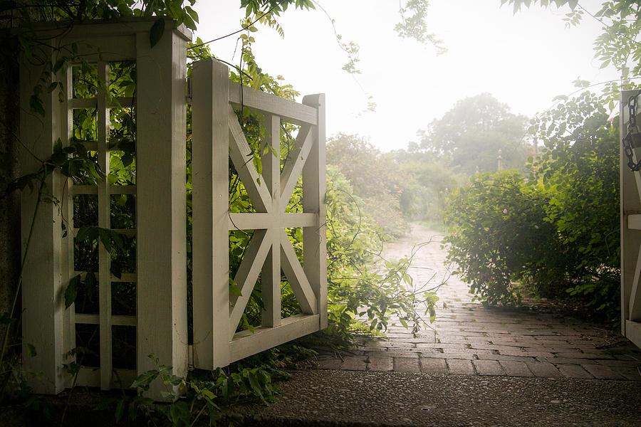 Botanical - Garden Gate - Mystic Garden Photograph by Gary Heller ...