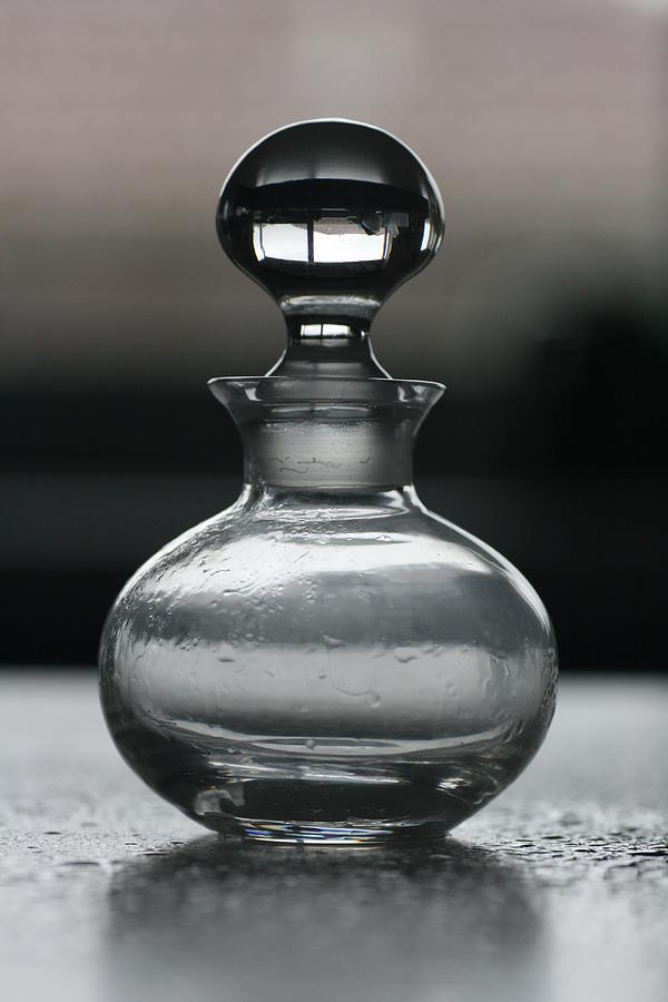 Bottle Photograph