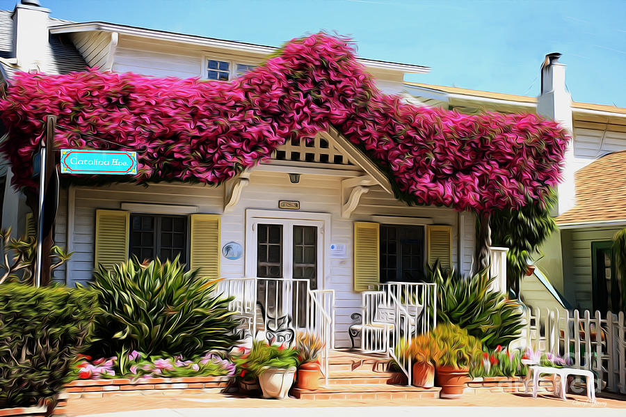 Bougainvillea House Photograph