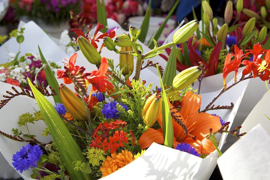 Bouquets Of Color Photograph