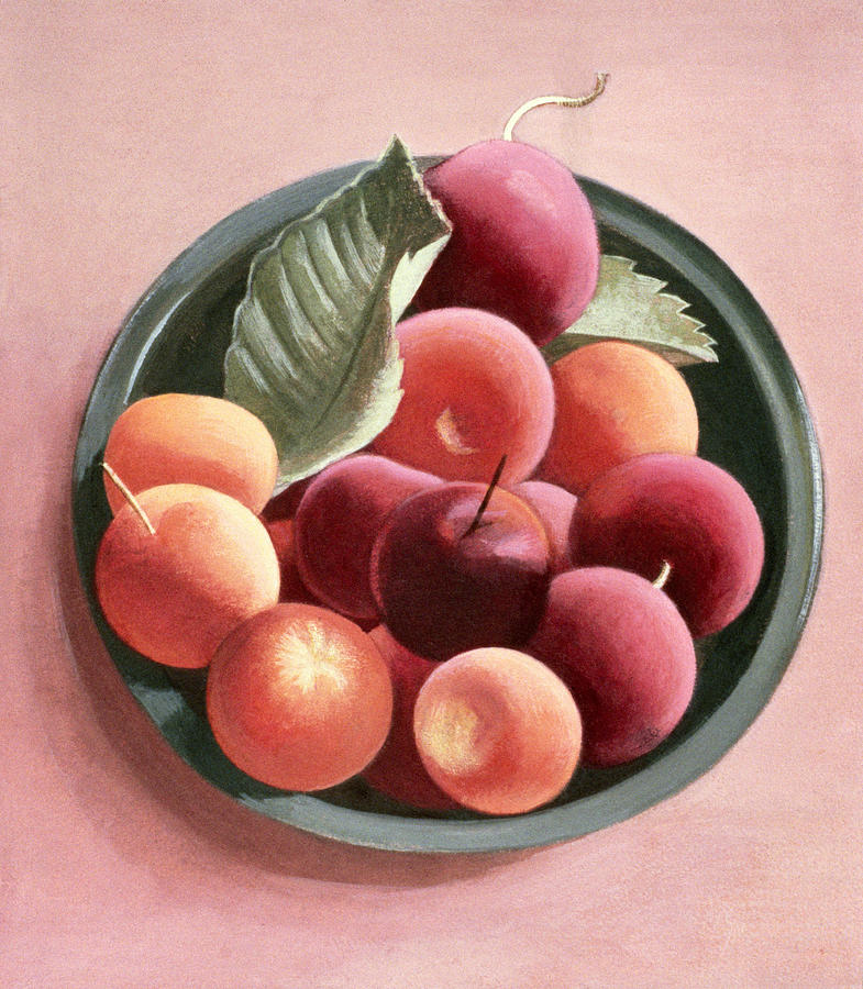 Plum Painting - Bowl Of Fruit by Tomar Levine