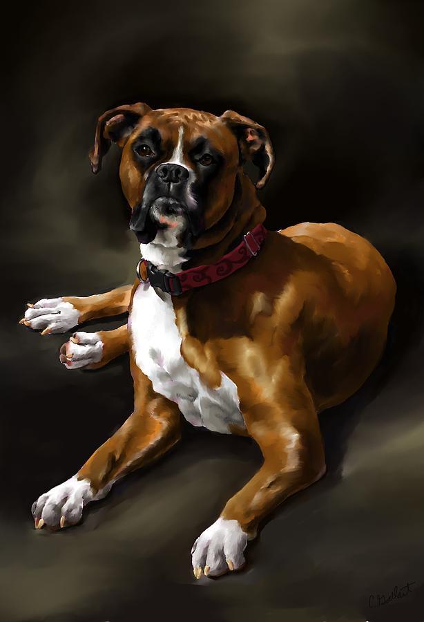 Boxer Dog Art Digital Art - Boxer by Cassandra Gallant