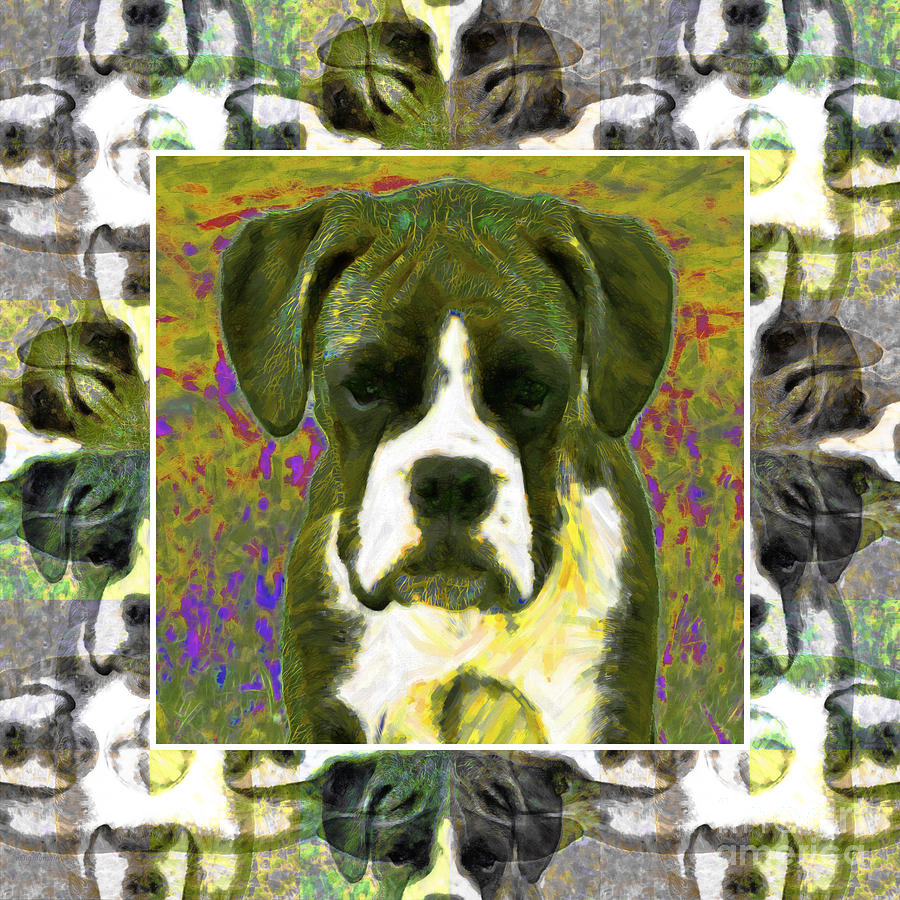 Boxer Dog 20130126 Photograph  - Boxer Dog 20130126 Fine Art Print