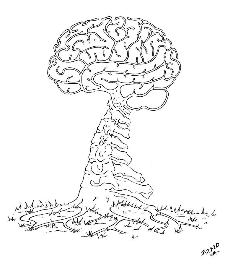 Brain Drawing - Brain Tree by Robert May