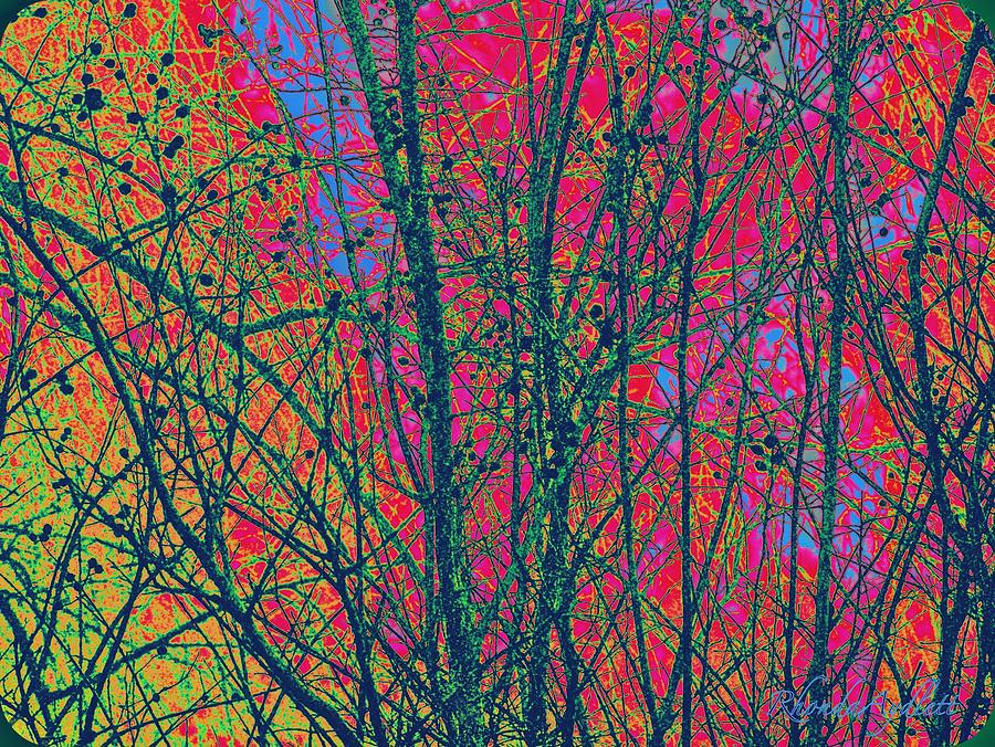 Branches Mixed Media