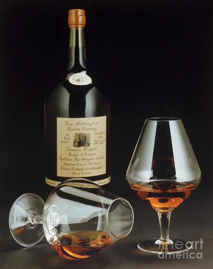 Brandy Photograph