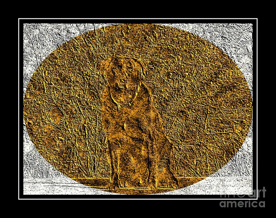 Brass Etching - Oval - Labrador Retriever Photograph