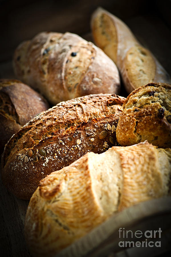 Bread Photograph - Bread Loaves by Elena Elisseeva