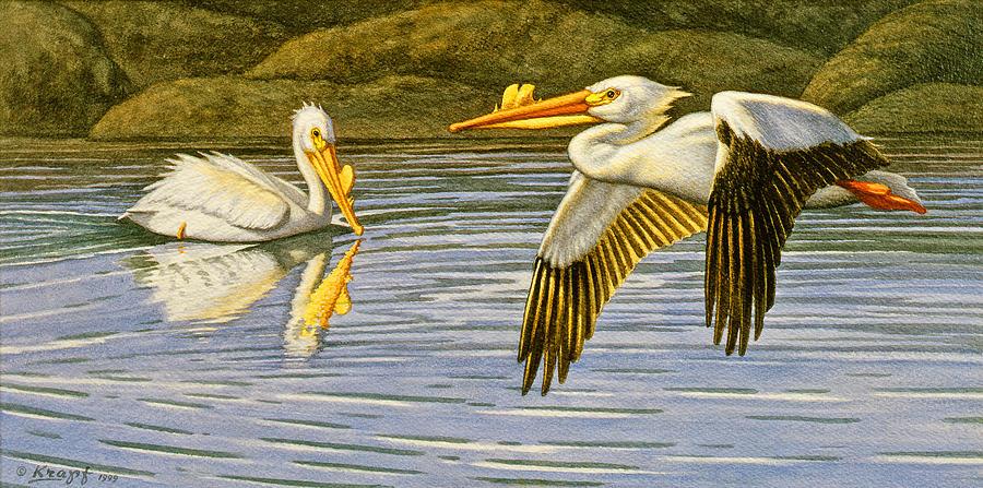 Breeding Season- White Pelicans Painting