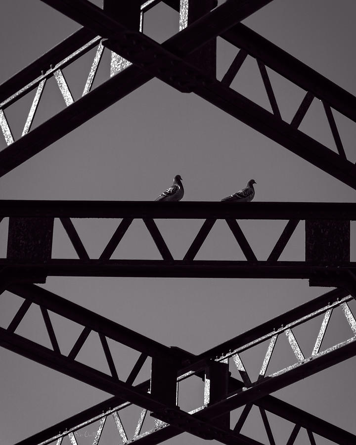 Bridge Abstract Photograph