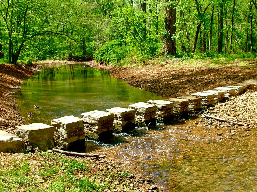 Bridge Pilings Across Colbert Creek At Mile 330 Along Rock Spring Trail On Natchez Trace Parkway-al Photograph