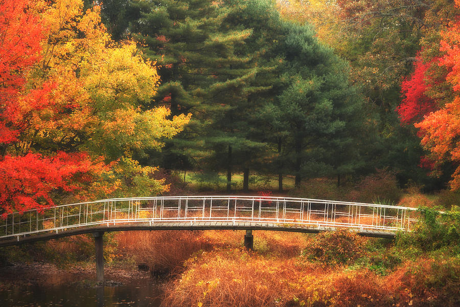 Bridge To Autumn Photograph  - Bridge To Autumn Fine Art Print