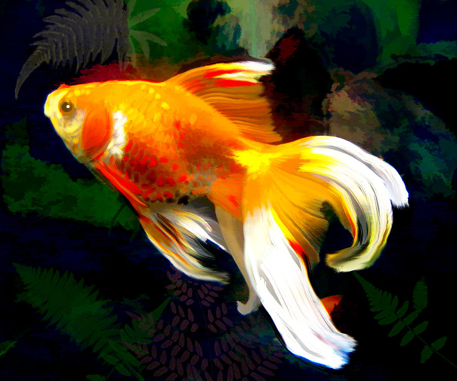 Bright Golden Fish In Dark Pond Painting By Elaine Plesser