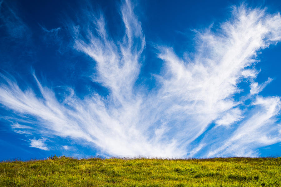Cloud Photograph - Bright Green Meadow And Deep Blue Sky by Matthias Hauser