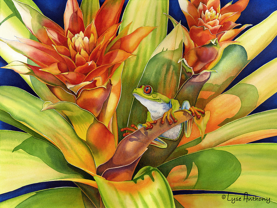 Frog Painting - Bright Stars by Lyse Anthony